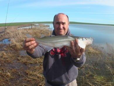 Pablo Baquedano, con un ejemplar de pejerrey de lindo porte, en Laguna La Soñada (Ochandio)