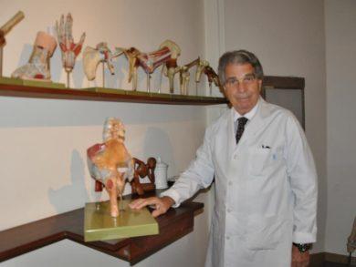 Los mayores logros de Risso están dados y reconocidos en la ortopedia y traumatología por su exitosa intervención en casos que solo dejaban la cirugía como camino posible