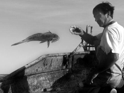 Raúl Pinza. Entre redes, gatuzos, corvinas y tiburones bacota que devuelve al agua cuando son pichones, este hombre de mar de 54 años, realiza su trabajo con una pasión inigualable