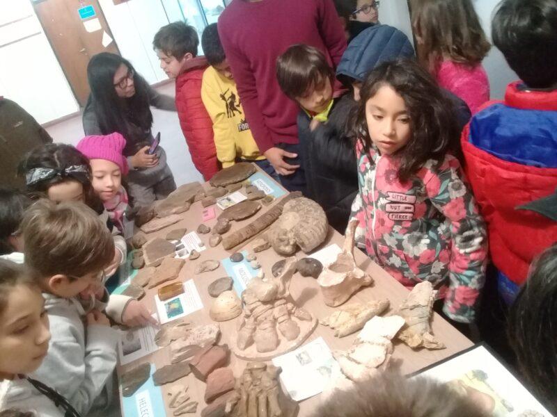 """""""Es importante estimular a los chicos en ciencia"""", consideró Natalia, que dicta talleres de paleontología para niños en la Universidad Nacional de Salta"""