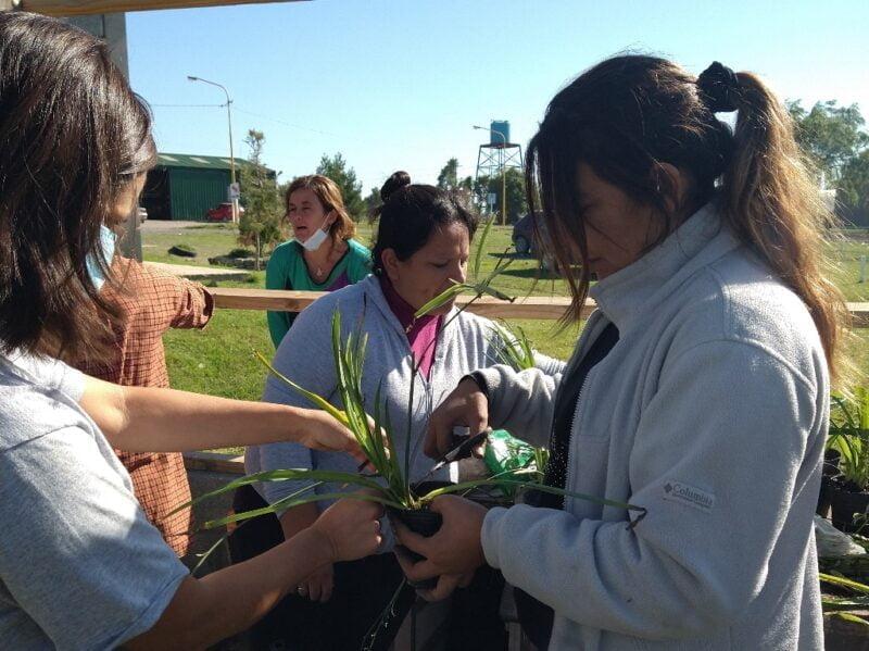 El objetivo del proyecto es generar una fuente de ingreso para las mujeres del barrio Los Ranchos de Luján a través de la venta de plantines criados por ellas mismas